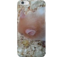 Baby Lavender iPhone Case/Skin