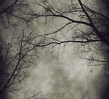 Dark trees by AnnArtshock