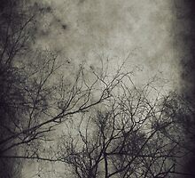 Dark trees 3 by AnnArtshock