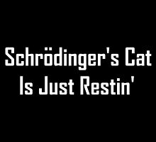 Schrodinger's Cat Is Just Restin'  by geeknirvana