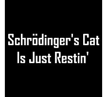 Schrodinger's Cat Is Just Restin'  Photographic Print
