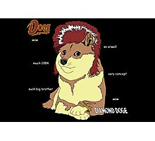 Diamond Doge Photographic Print