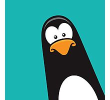 Pablo the Pensive Penguin Photographic Print