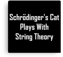 Schrodinger's Cat Plays With String Theory Canvas Print