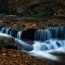 Autumn Creekside  by Saija  Lehtonen