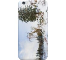 Winter at Edwards Gardens iPhone Case/Skin