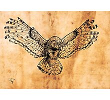 Flying owl digital illustration on old paper texture Photographic Print