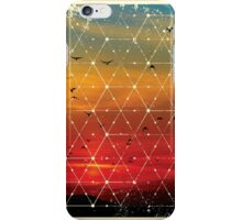 Nature and Geometry Flying Birds iPhone Case/Skin