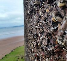 Wall of Rocks with Beach Background by JupiterHadley
