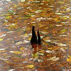 Leaves In The Water by WildestArt