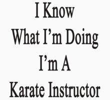 I Know What I'm Doing I'm A Karate Instructor  by supernova23