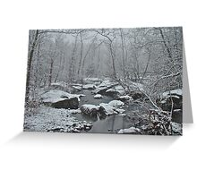Dressed in White For Winter's First Snow Greeting Card