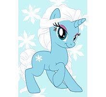 Pony Elsa Photographic Print