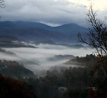 Smoky Mountain Morning by ArdenBryant