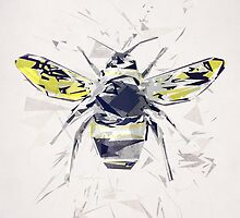 BumbleBee by tracieandrews