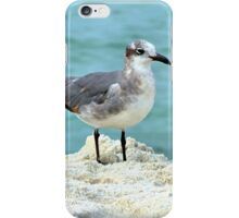 Beach Bird iPhone Case/Skin