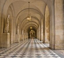 Versailles Palace by Sheila Laurens