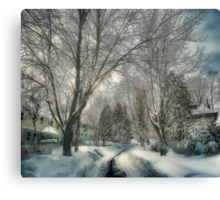 Brookline after Blizzard Nemo Canvas Print