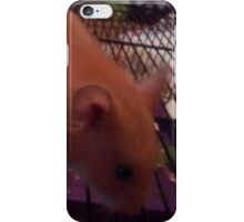 Examples For Demmi Ross 2 iPhone Case/Skin