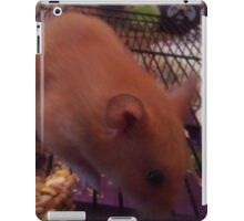 Examples For Demmi Ross 2 iPad Case/Skin