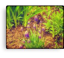 Blue Flower 2 Canvas Print