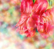 Bokeh Background with Tulips by AnnArtshock