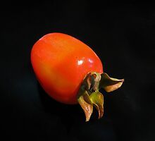 The Persimmon by Eileen McVey