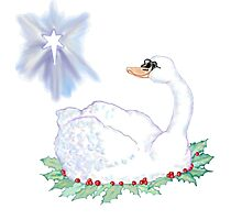 Christmas Swan Photographic Print