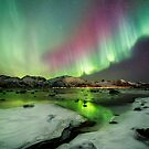 Ice ant Northern Lights by Frank Olsen