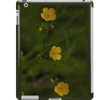 Three Meadow Buttercups - Burntollet Woods, County Derry iPad Case/Skin