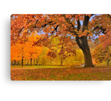Fall at Larz Anderson Canvas Print