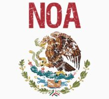 Noa Surname Mexican by surnames