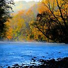 Once Upon An Ozark Morning by NatureGreeting Cards ©ccwri