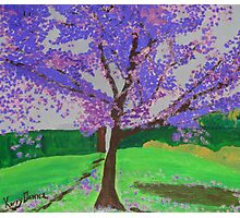 The Jacaranda Tree Photographic Print