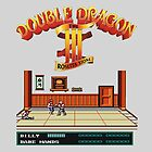 Double Dragon 3 by greatbritton99