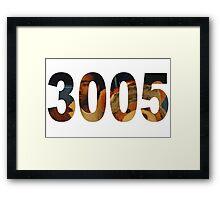 3005 Framed Print