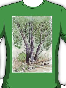 Blue gum trees across the road from my studio T-Shirt