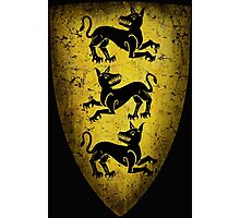 House Clegane Sigil from Game of Thrones Photographic Print