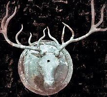 Deer Bust by ZombieFiend