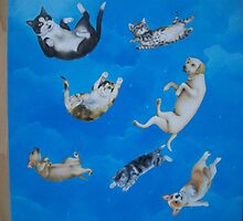 raining cats and dogs. by Louise Masters