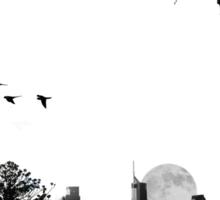 Dornoch Terrace Moonrise Sticker