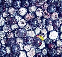 Blueberries by mayalenka