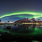Auroras over the pond by Frank Olsen