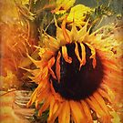 Sunflowers by Yvonne Roberts