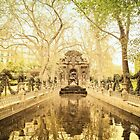 Paris - Fountain - Garden of Luxembourg by Vivienne Gucwa