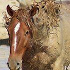 Mud Bath Tablet Case by Gene Praag