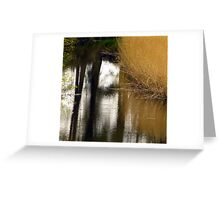 Reed Reflections Greeting Card