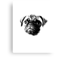Tough Life Pug Canvas Print