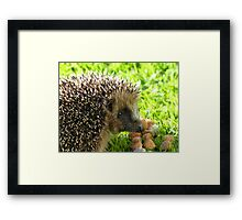 Thank You... You Saved My Life... - Hedgehog - NZ Framed Print