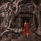 Path to Enlightenment - Ta Prohm Temple Cambodia by Mark Shean